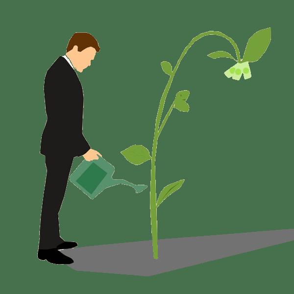 Nourrir la croissance par l'investissement