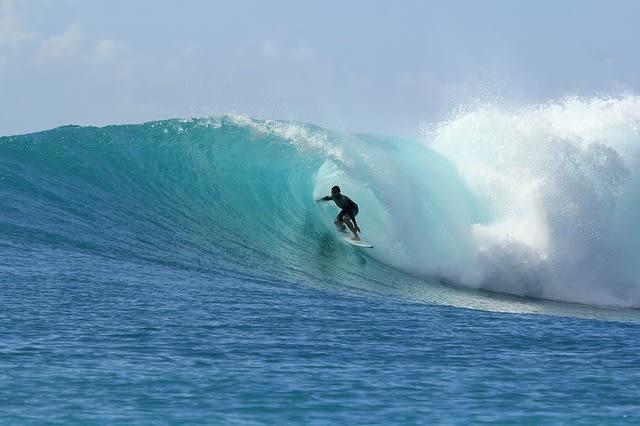Le momentum est comme une vague que l'on surfe