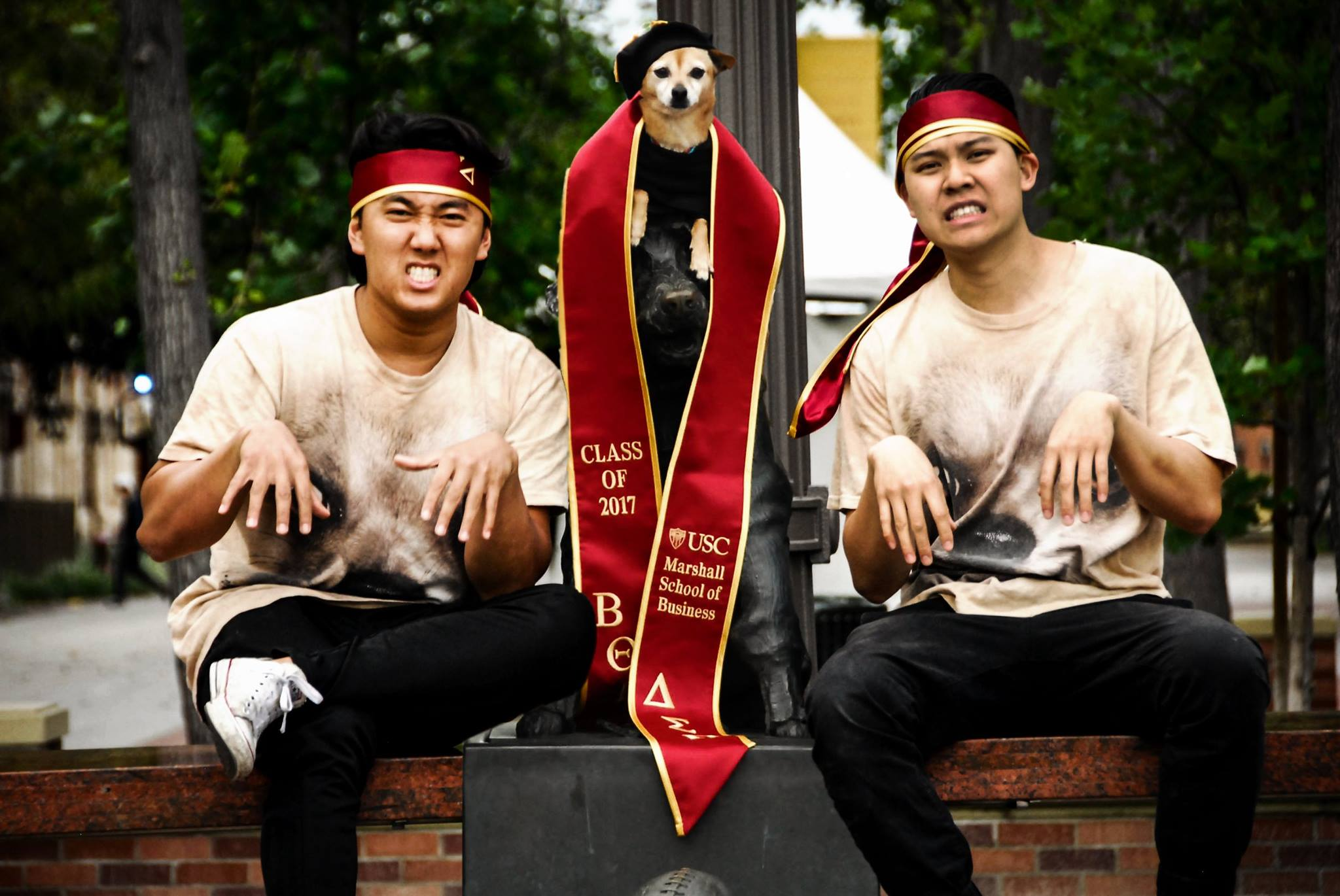 The Social Experiment Year 4: Two Bachelors and a Dogtorate