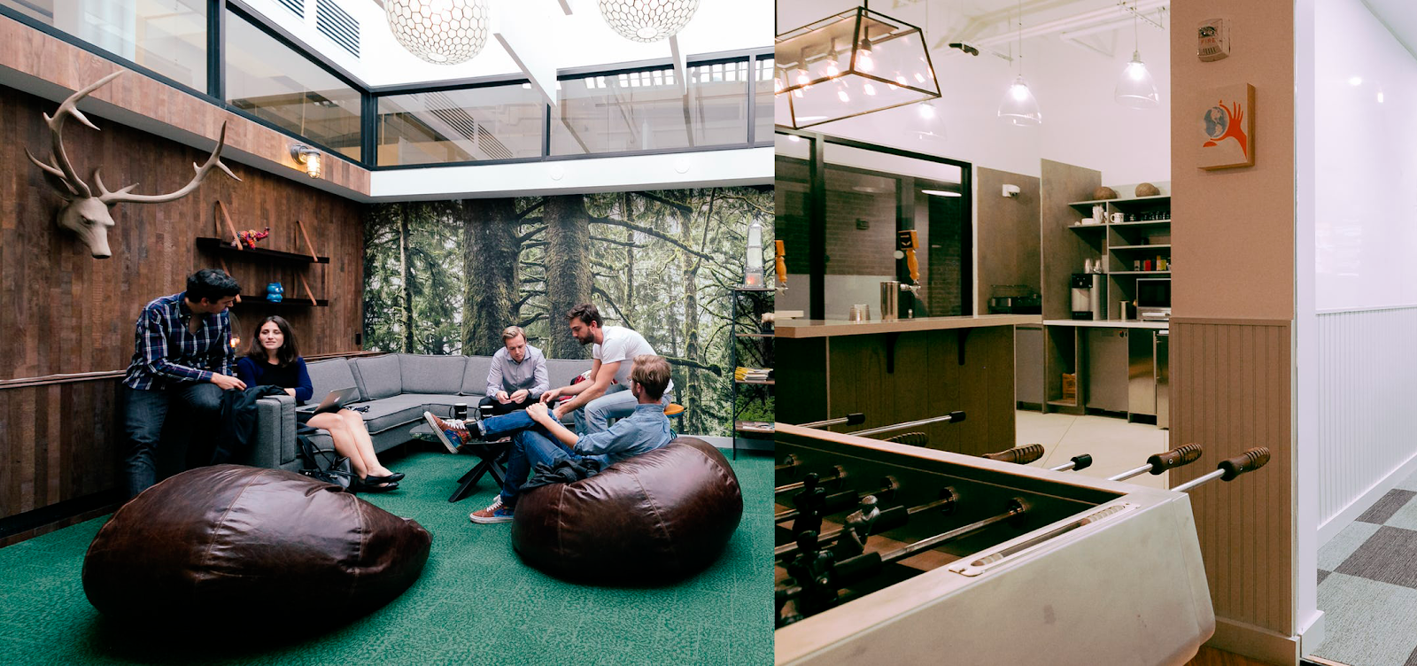 WeWork's Startup Culture