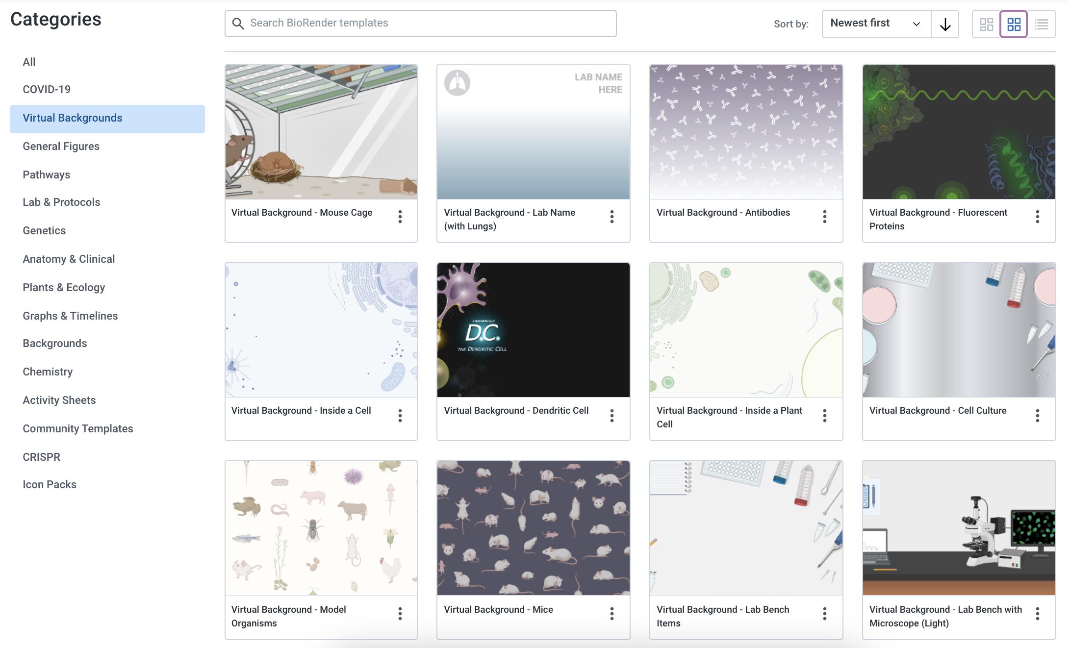 BioRender Zoom Backgrounds Template Gallery