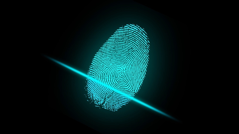 Fingerprint recognition is currently the most common and cheap form of biometric identification.