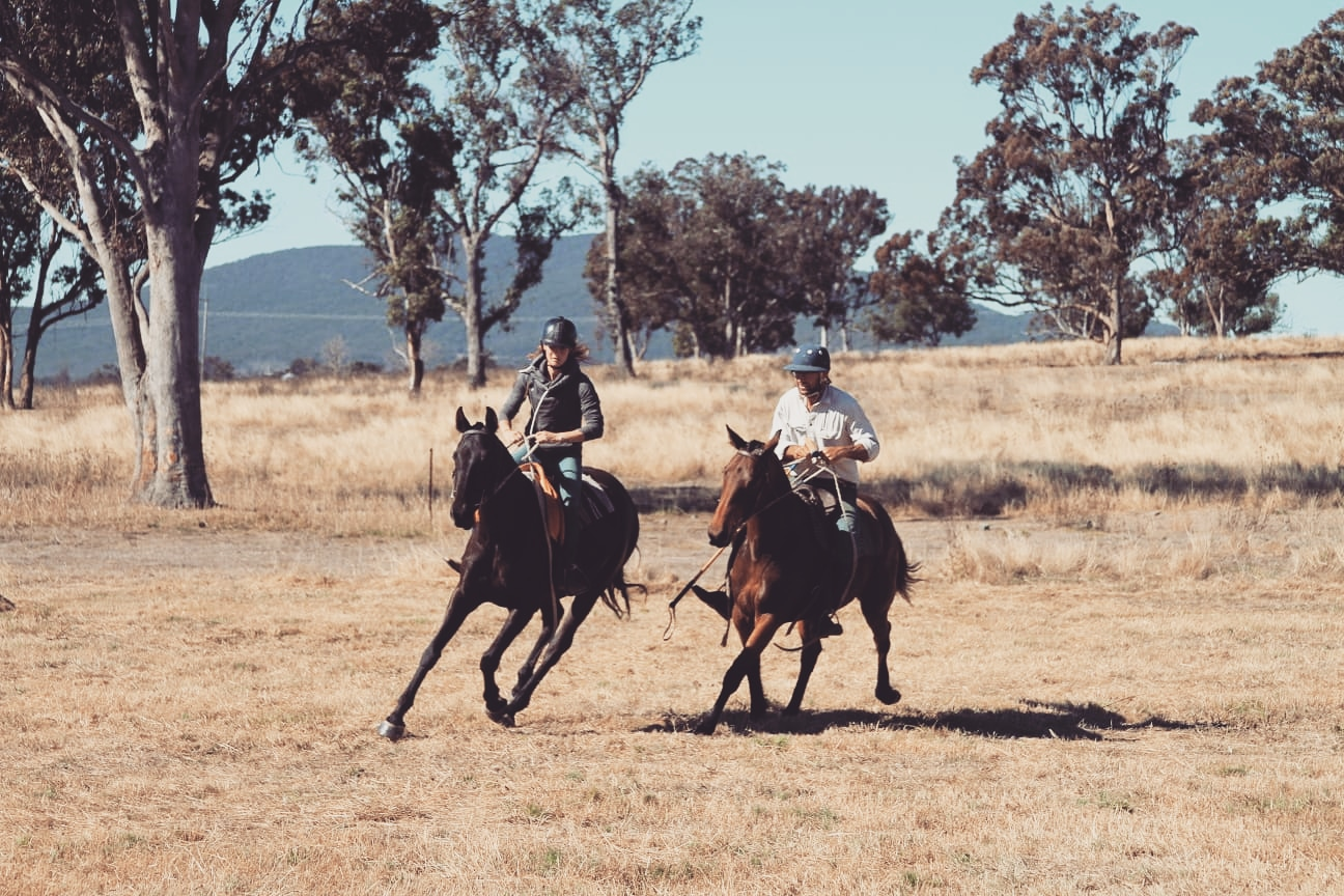 Two people riding horses in a paddock