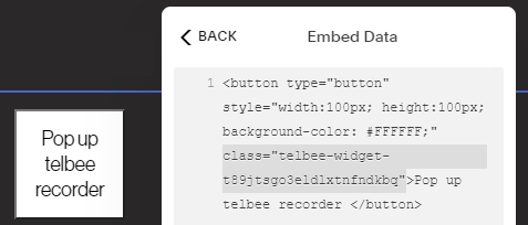 Adding an element to trigger a telbee plugin in Squarespace