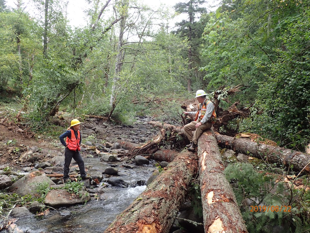 Logjam construction on Little Wind River, 2019 by Dan Richardson