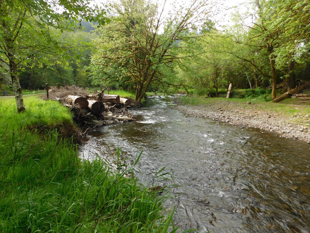 Instream wood structure creating fisheries habitat, improving water quality, and protecting stream bank so trees can establish
