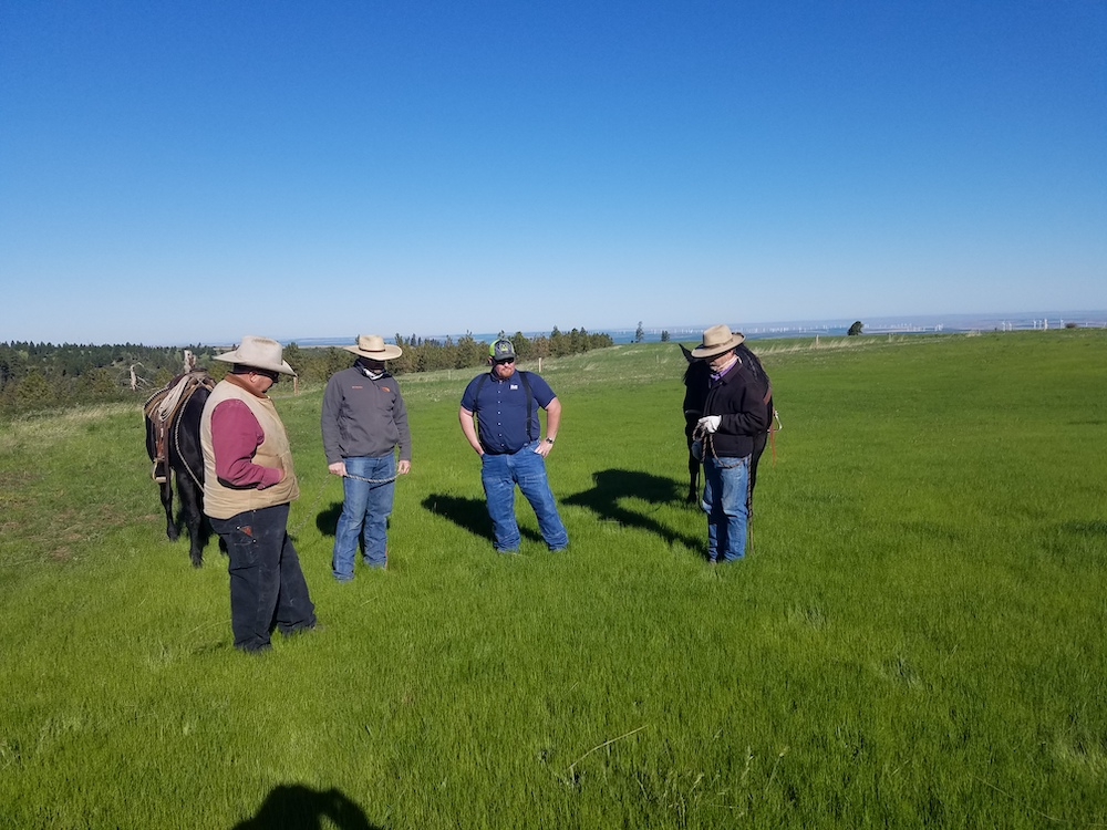 Technical assistance to landowners