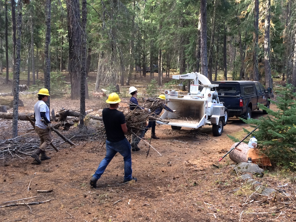 Crew reducing fuels in fire-prone forests