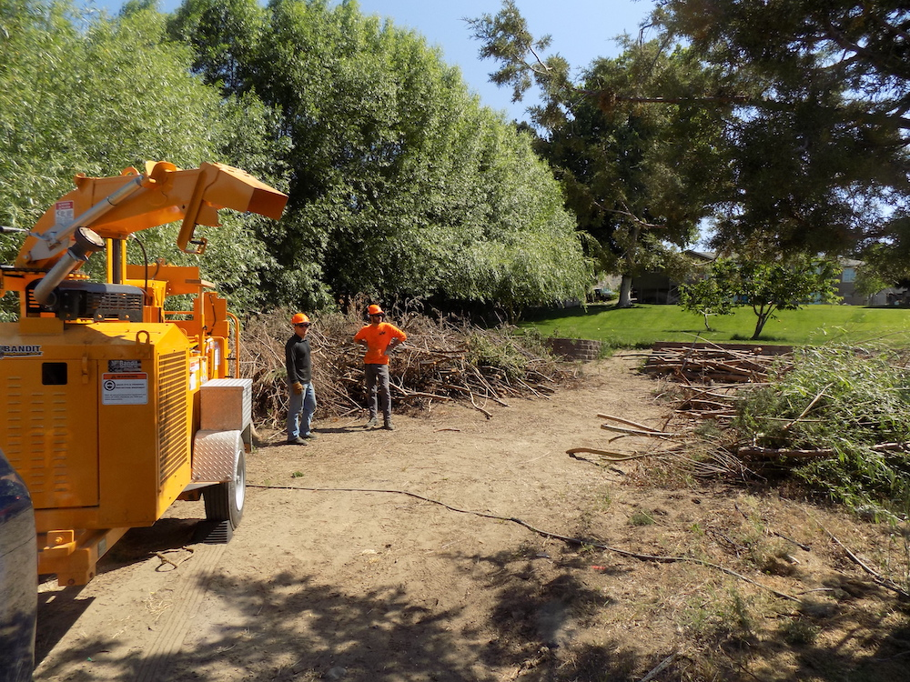 Spring wood chipping day to reduce wildfire fuel