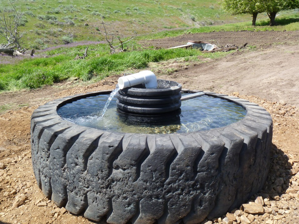 Livestock drinking water facility constructed away from fish-bearing streams