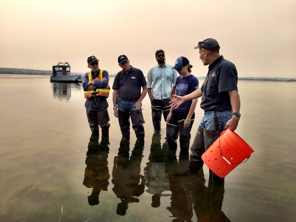 Inspecting local shellfish beds with owner and Dept. of Agriculture