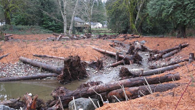 Dickerson Creek restoration project
