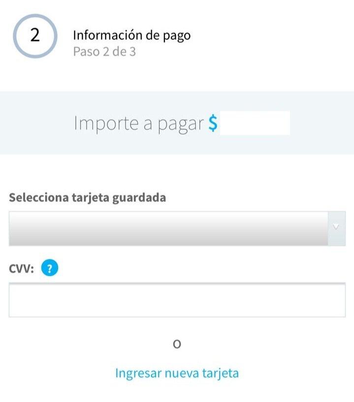 Pagar+Telcel+Tarjeta+de+de%CC%81bito.jpg