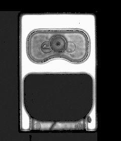 High resolution Scanning Acoustic Microscopy of ceramic fingers Crack bottom on Ceramic Fingers