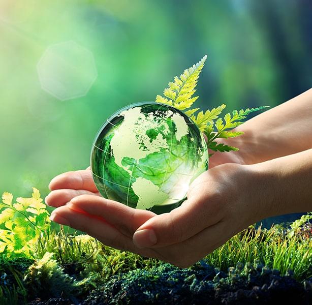 Nachhaltig arbeiten