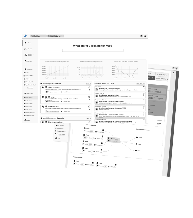 Wireframes of the Data Portal