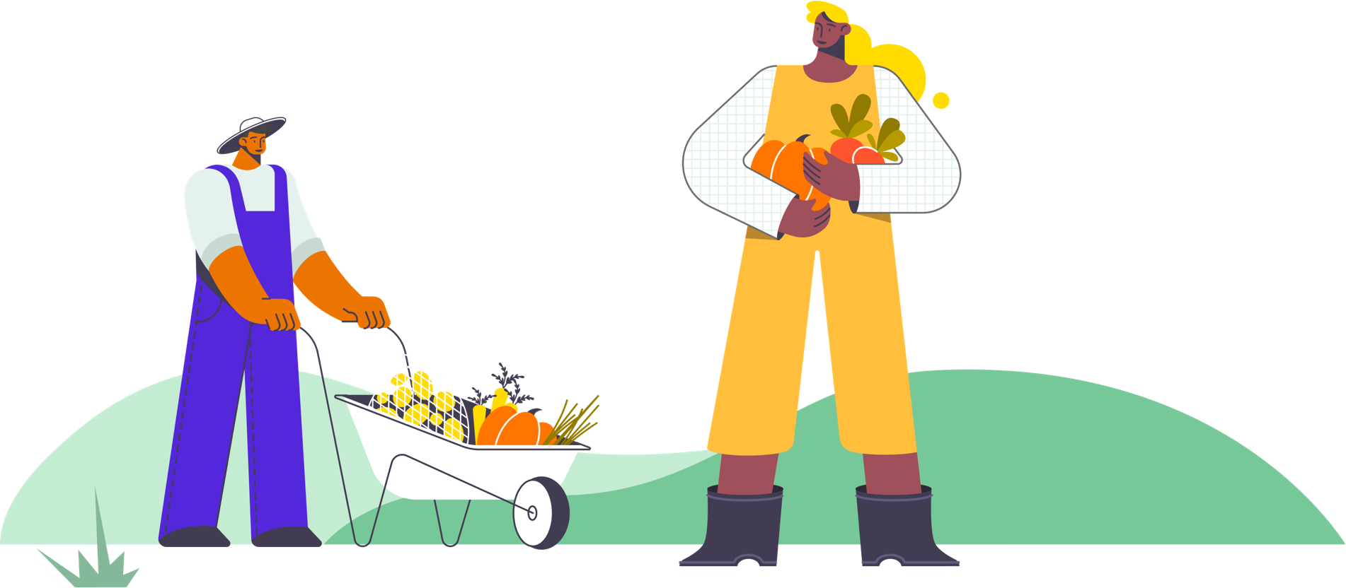 Two workers in a garden. One has a wheelbarrow and the other is standing holding produce.