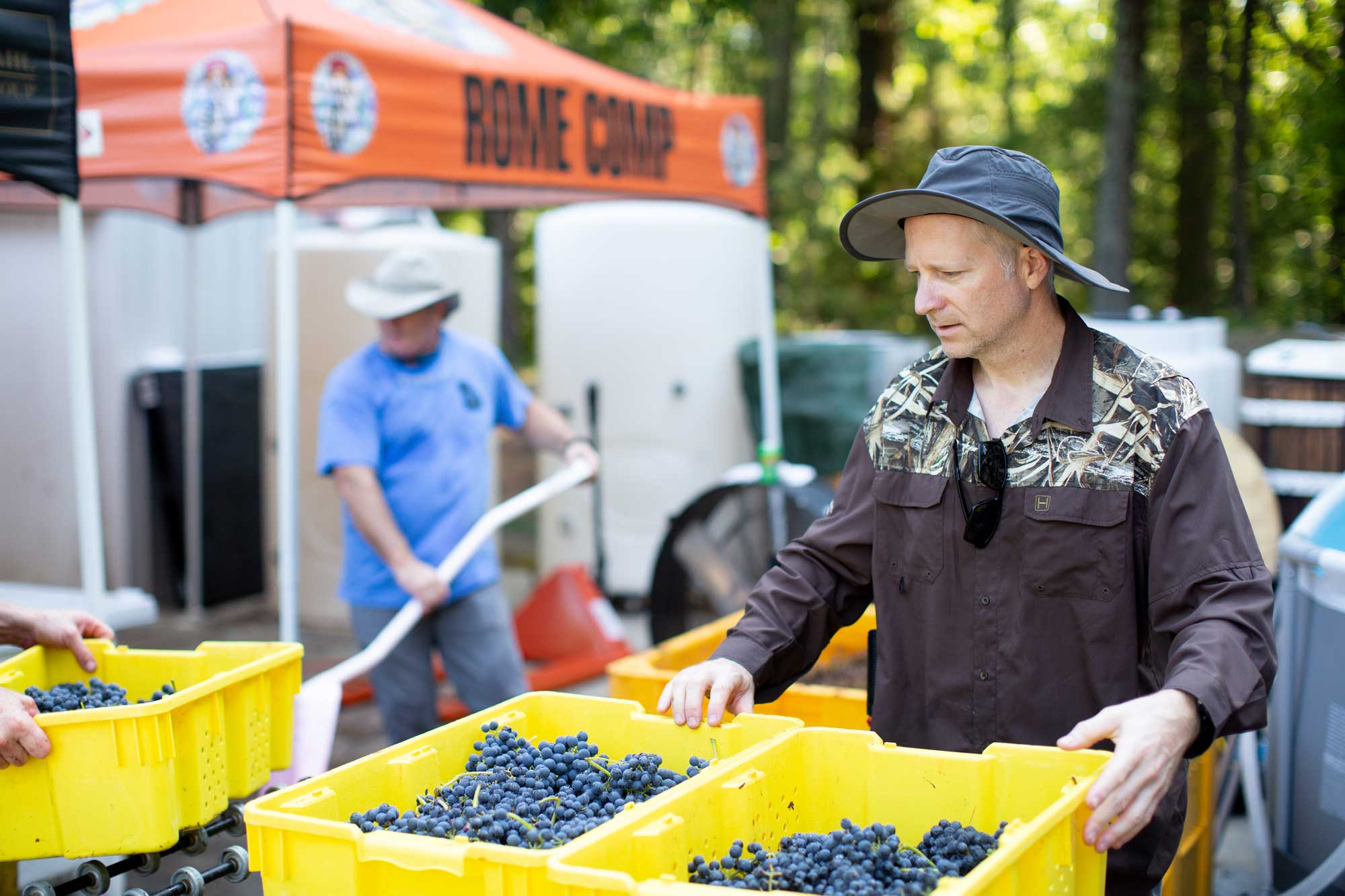 A man carries bins of grapes