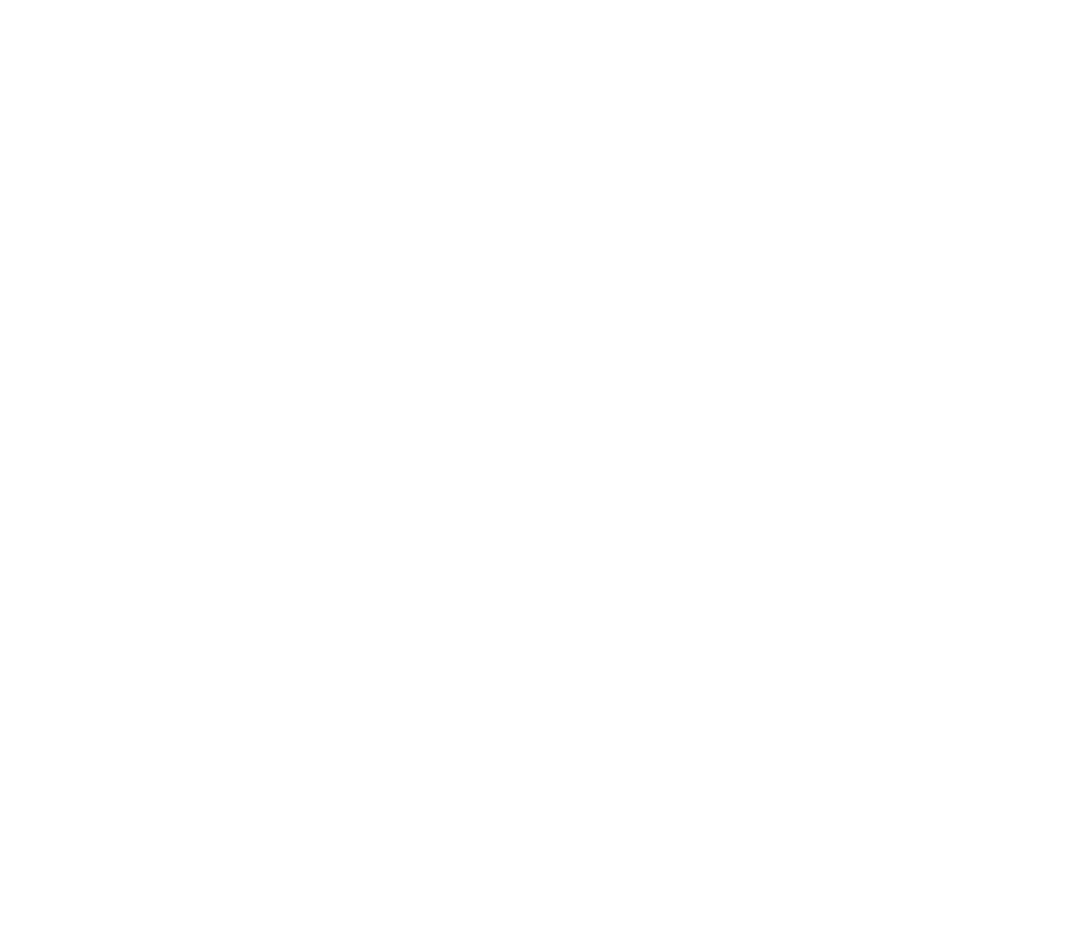 Official Better World Fund logo. A golden Bird symbole of freedom
