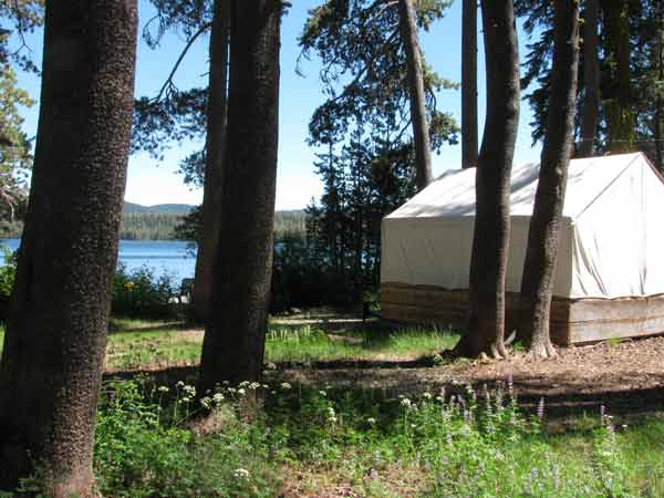 Tent cabin on the shore of Gold Lake with wood framing and a white canvas tent cover.