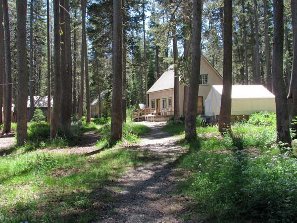 The sunny path leads to cabins and tent cabins along the shore of Gold Lake.