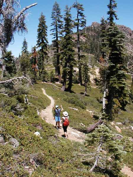 The trail to the peak of Mt. Elwell skirts the ridge with views on all sides.