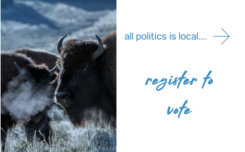 Register to vote in Wyoming