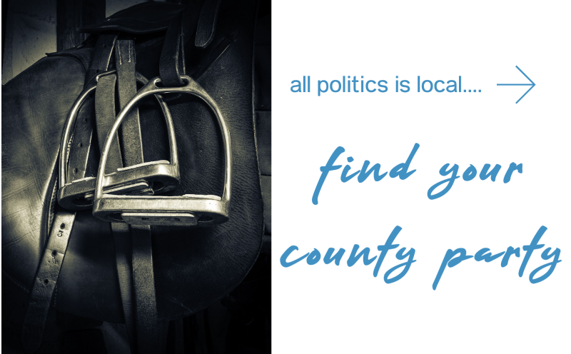 Wyoming County Democratic Parties