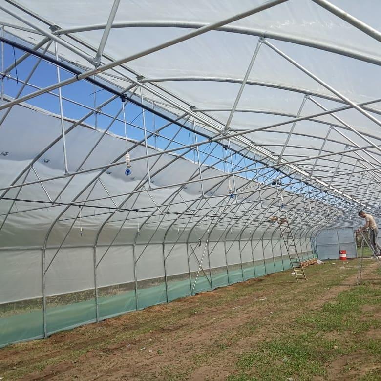 производство туннельных теплиц с прямой стенкой