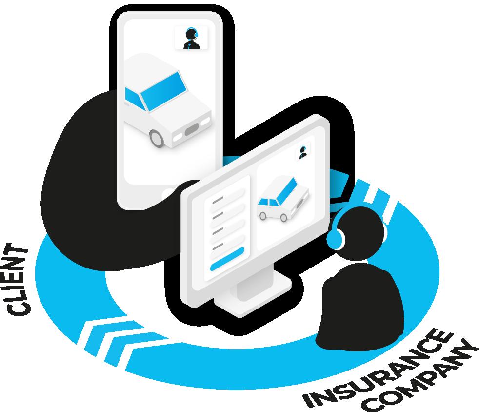 Remote online inspection