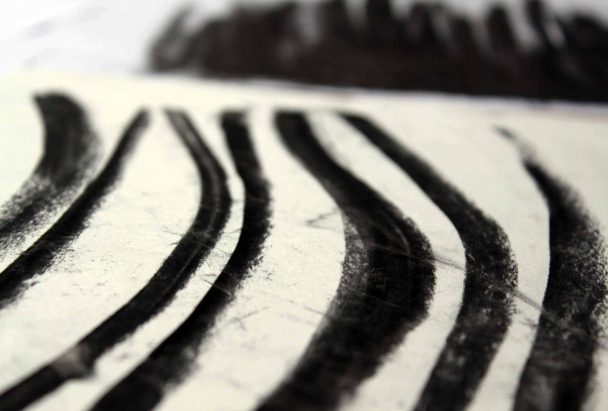 Detail of our original artwork for Springs' Smokery.