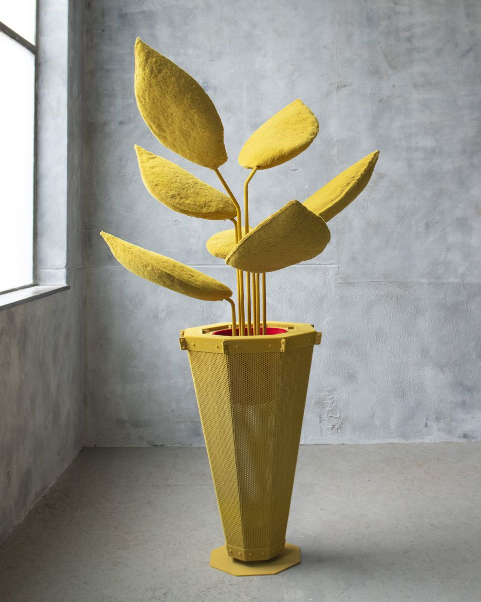 LYB grote plant geel