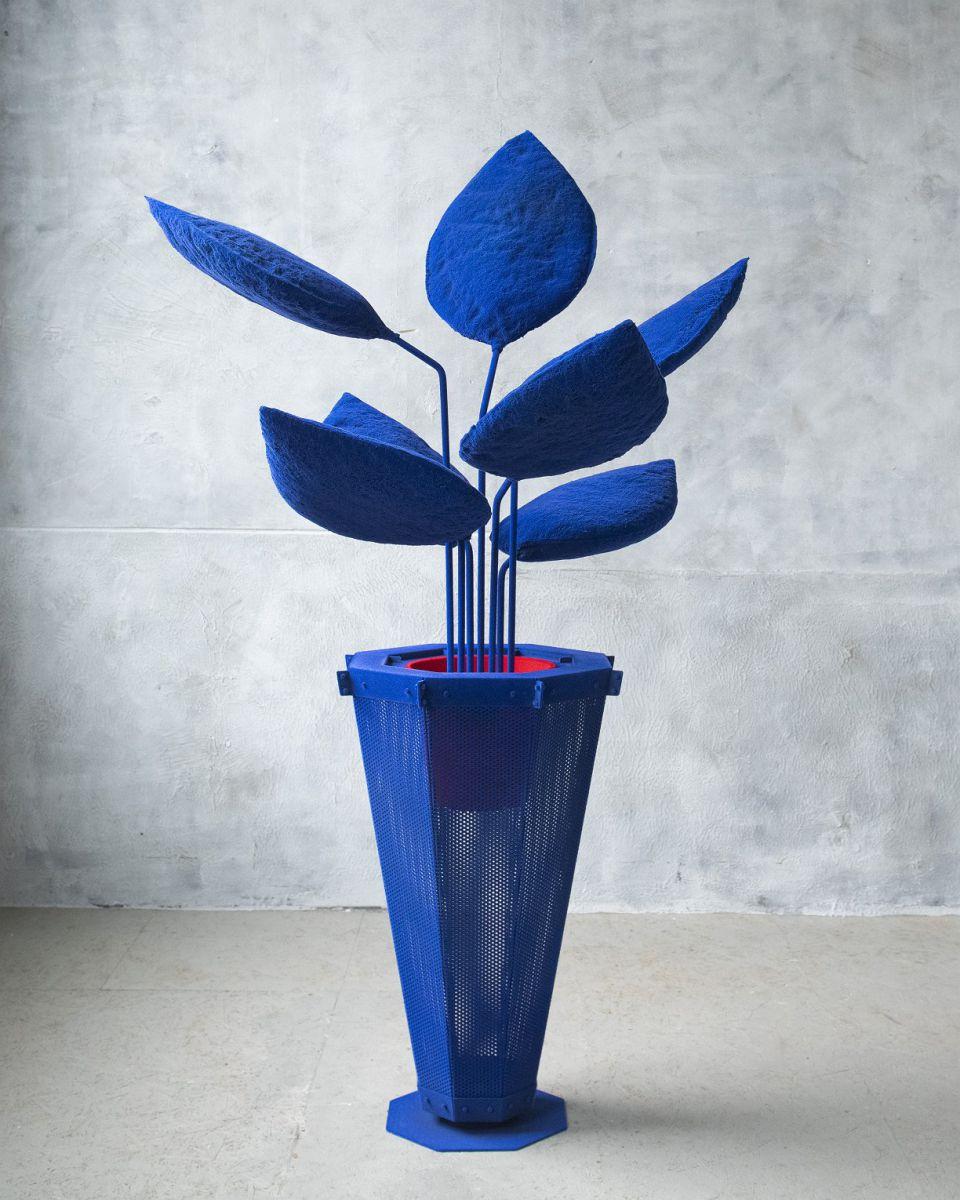LYB grote plant blauw