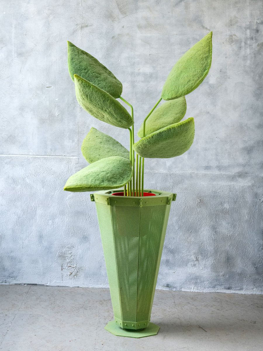 LYB grote plant groen