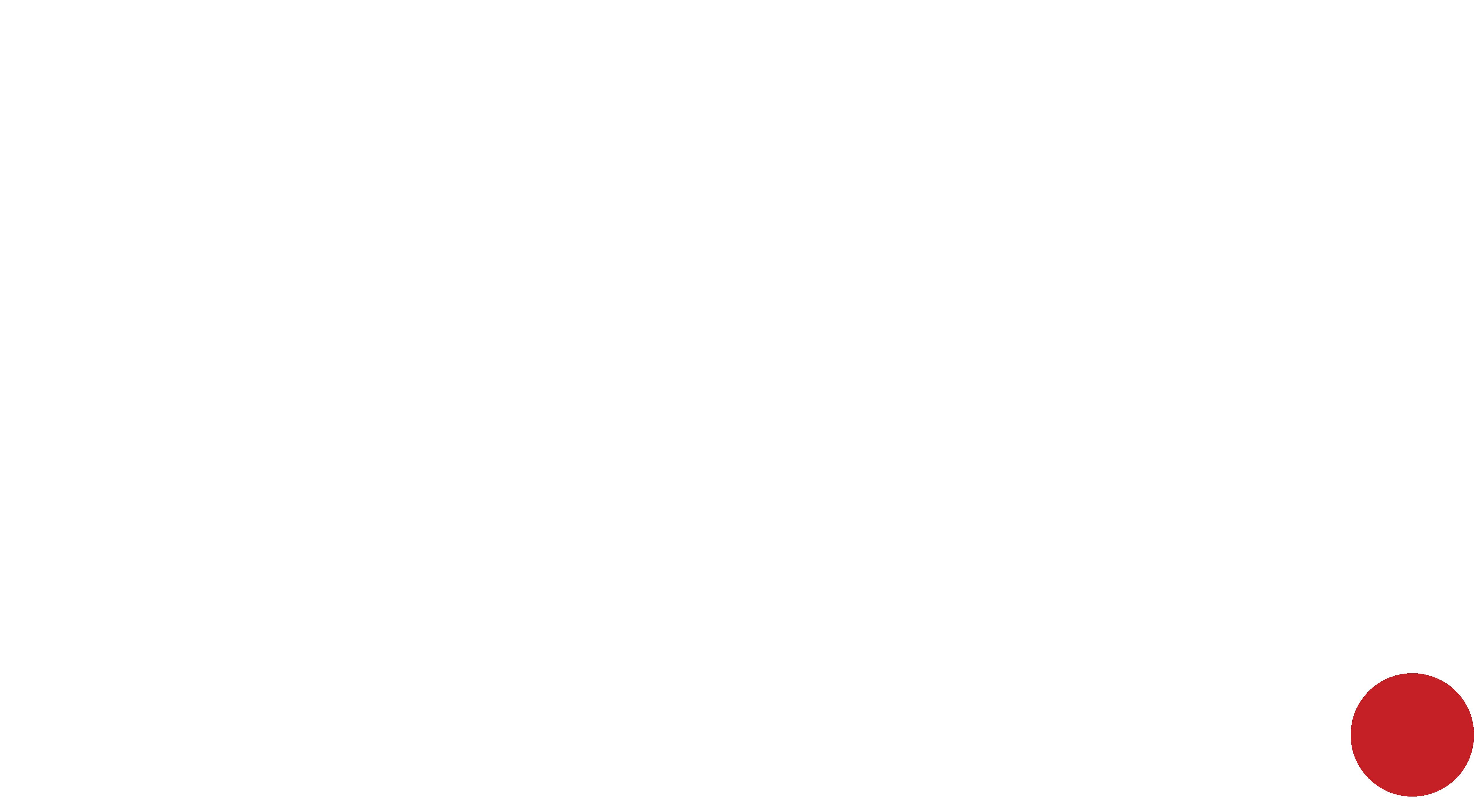 LYB logo wit