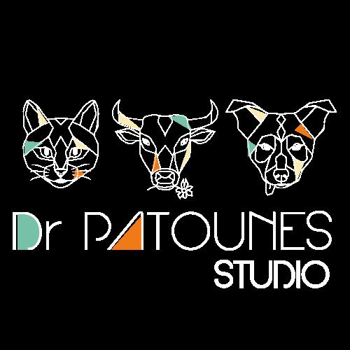 Logo Dr Patounes Studio