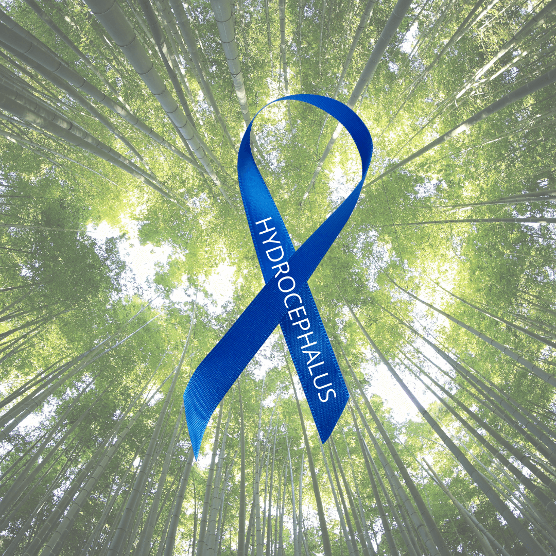 Forest Bathing Walk for Hydrocephalus Awareness Month