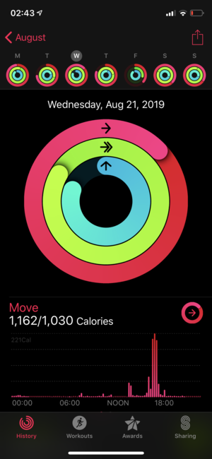 Apple Fitness Dates.PNG
