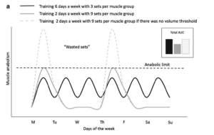 The Importance of Load During Resistance Training: Part 2 | The APLYFT Blog