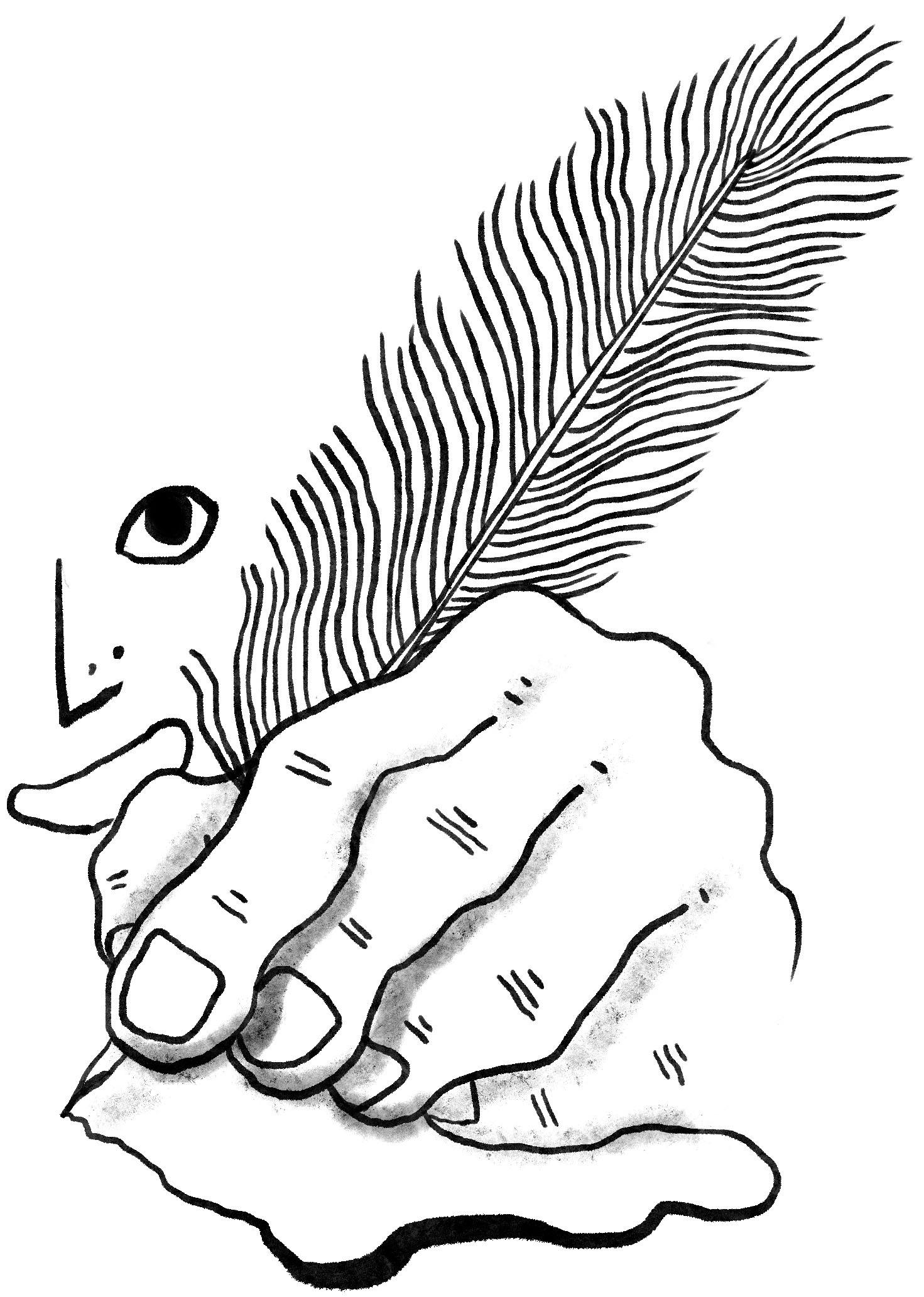pluma, redacción y guión