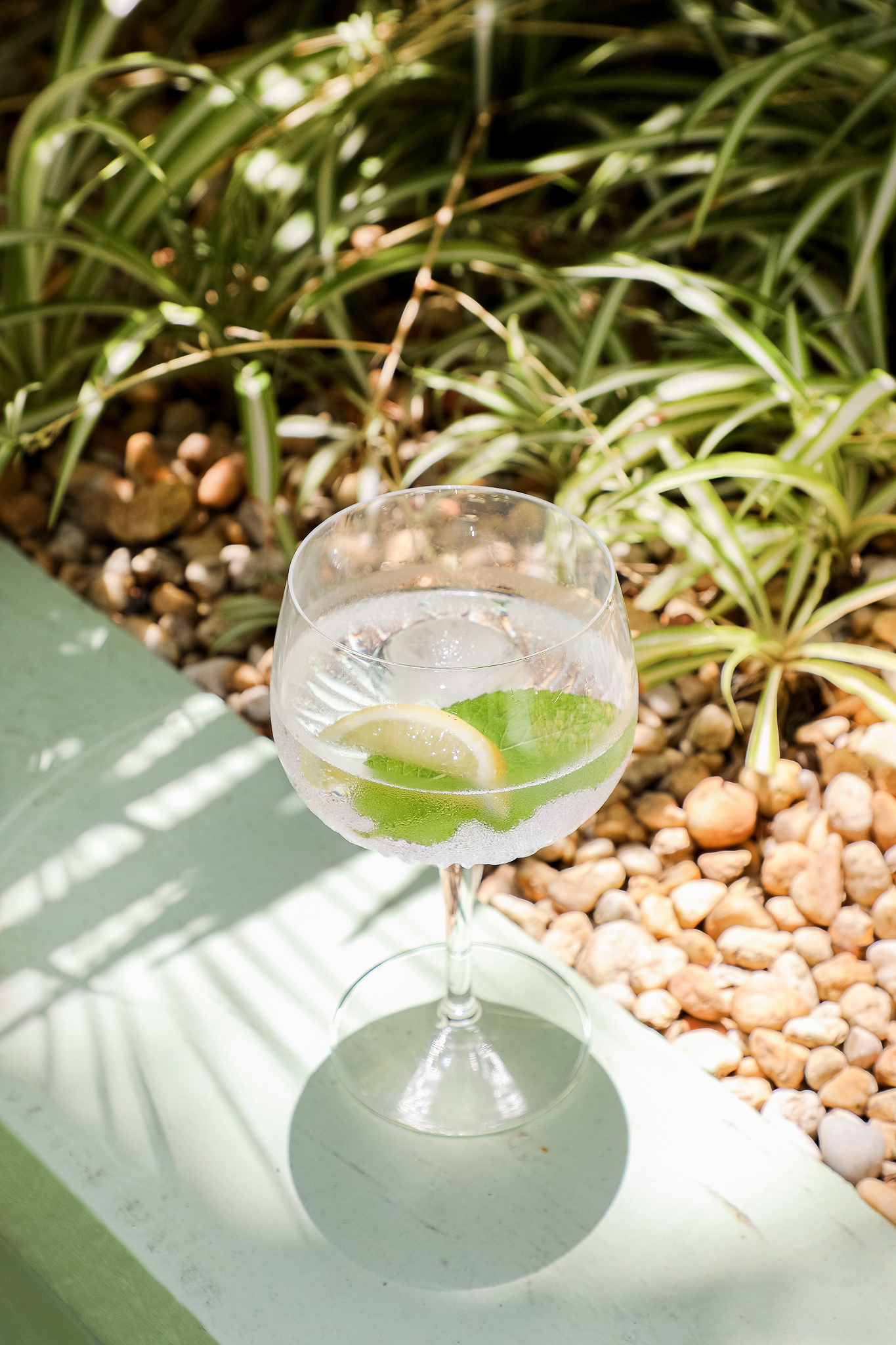 A gin drink with lime photographed outside next to plants.