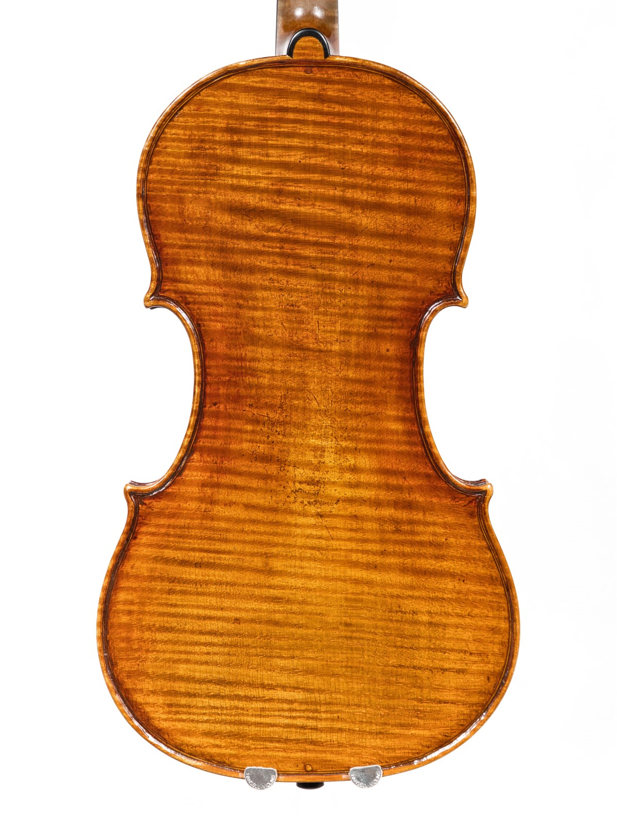 british violin back