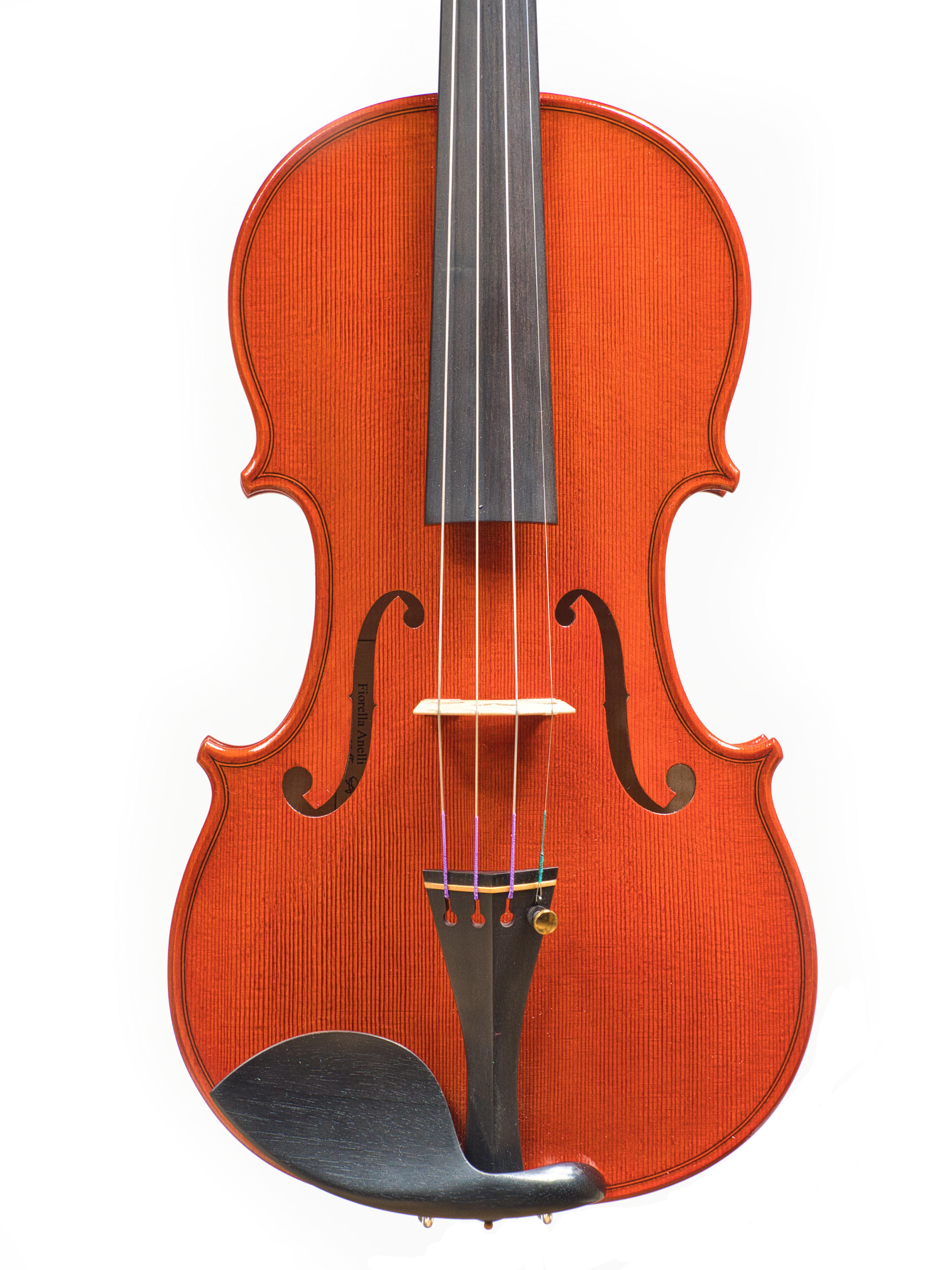 Violin by Fiorella Anelli, 2015