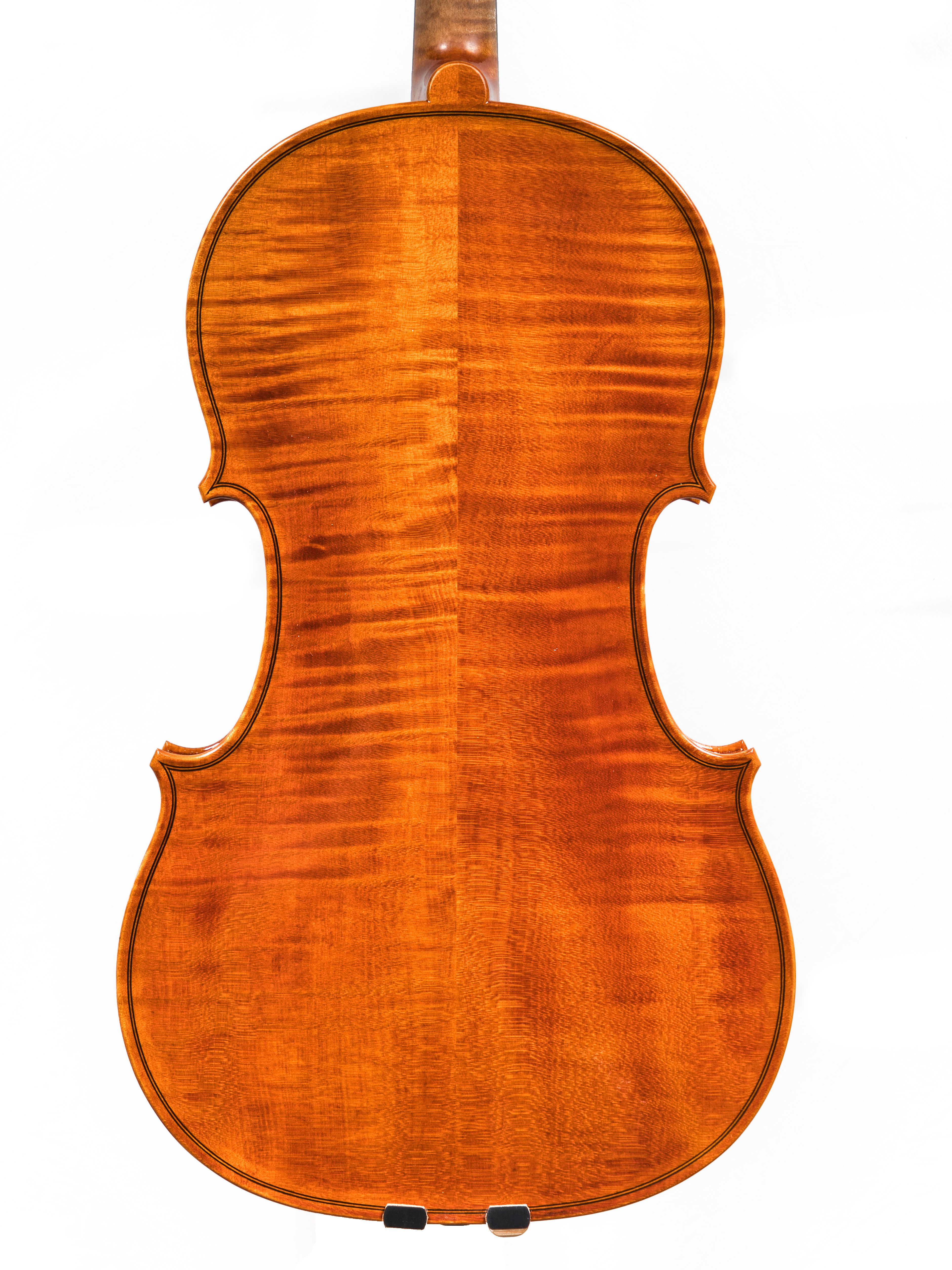 french viola back