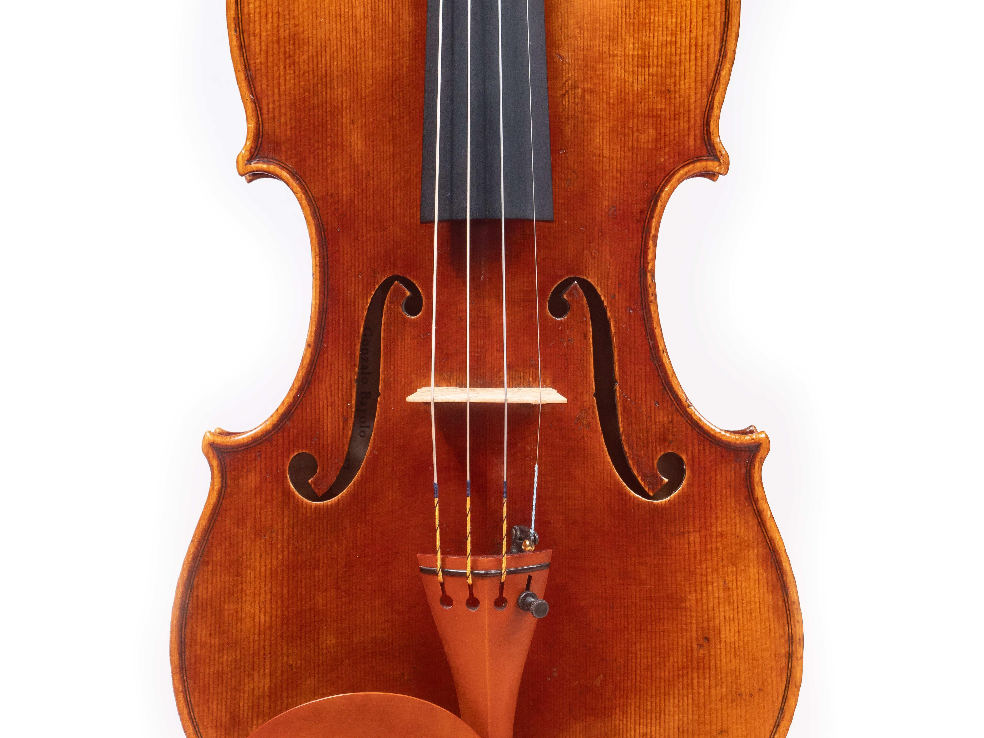 bayolo violin