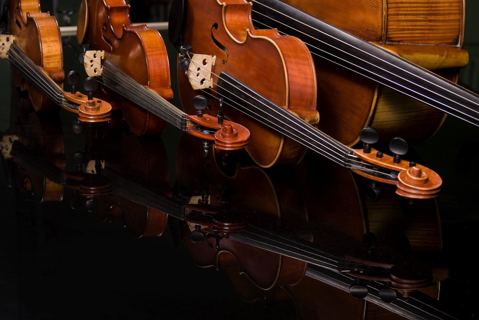 How to Choose a Violin: 7 Expert Tips from a Luthier