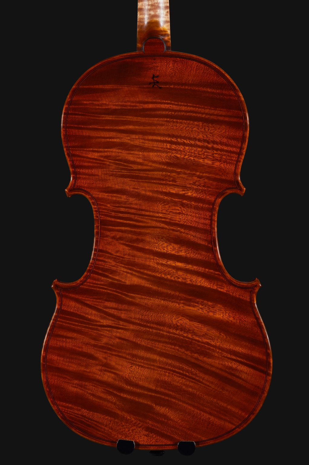 salvadori violin