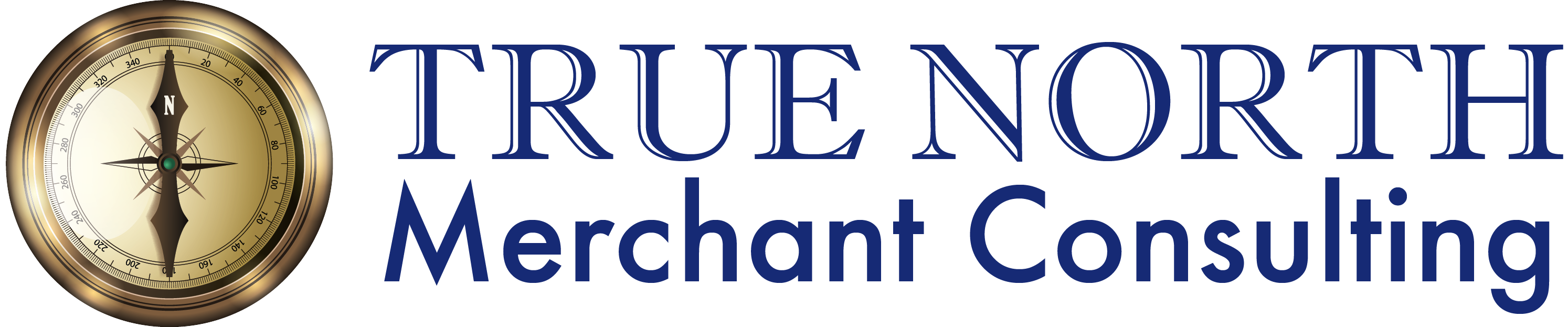 True North Merchant Consulting Logo - Blue