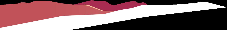 Cource bottom vector