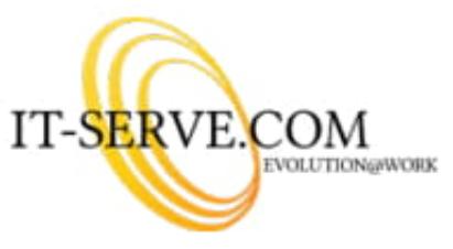 IT Serve logo